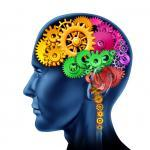 Unlock the power of your brain